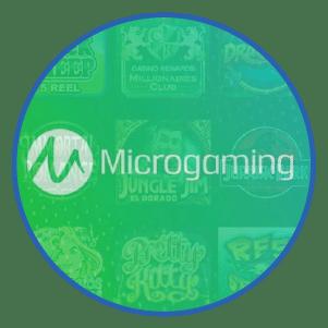 MicroGaming Logiciel